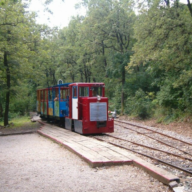 Light railway